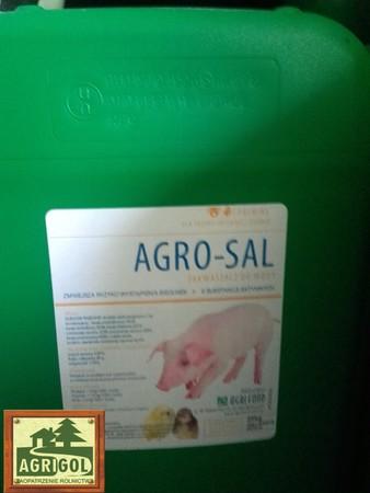AGROSAL zakwaszacz w płynie,kwasy mrówkowy,mlekowy 25kg (2)