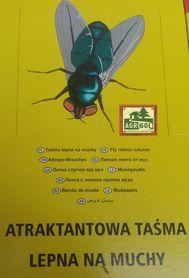 Lep z wabikiem okrągły 100 szt na muchy, owady