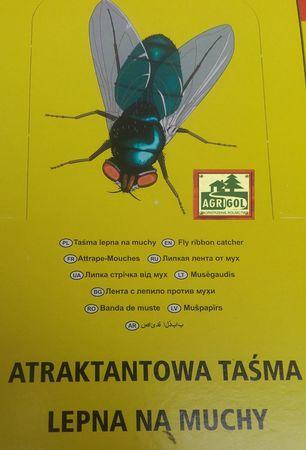 Lep z wabikiem okrągły 100 szt na muchy, owady (1)
