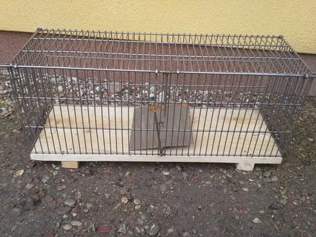 Żywołapka na szczura 65cm (1)