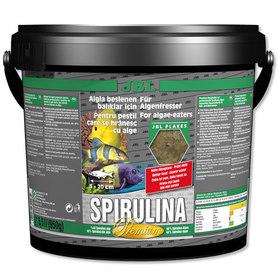 JBL PREMIUM SPIRULINA 40% wiaderko 5,5L pokarm
